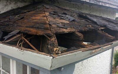 Manutenzione del tetto: come farla, perché e quando